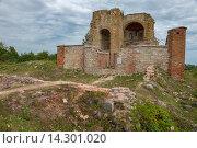 Купить «Руины церкви Благовещения на Рюриковом городище, Великий Новгород», фото № 14301020, снято 8 августа 2015 г. (c) Pukhov K / Фотобанк Лори