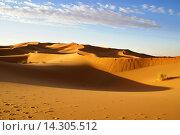Марокко. Свет и тень дюн Эрг Шебби (2007 год). Стоковое фото, фотограф Андрей Левин / Фотобанк Лори