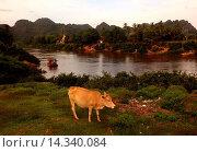 Купить «Die Landschaft am Xe Bang Fai River beim Dorf Mahaxai Mai von Tham Pa Fa unweit der Stadt Tha Khaek in zentral Laos an der Grenze zu Thailand in Suedostasien.», фото № 14340084, снято 23 июля 2019 г. (c) age Fotostock / Фотобанк Лори