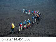Купить «Tourists walking in a line through the lava sands of the Tolbachik volcano, Kamchatka, Russia, Eurasia», фото № 14451336, снято 15 декабря 2017 г. (c) age Fotostock / Фотобанк Лори