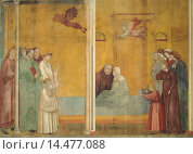 Купить «The Confession of the Woman Raised from the Dead, by Giotto, 14th Century, 1300 -1300, fresco, cm 270 x 230. Italy, Umbria, Perugia, Assisi, Upper Basilica of San Francesco.», фото № 14477088, снято 22 июля 2019 г. (c) age Fotostock / Фотобанк Лори