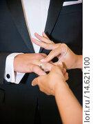 Купить «Time to marry, placing the wedding ring», фото № 14621100, снято 18 января 2019 г. (c) age Fotostock / Фотобанк Лори