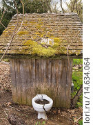 """Купить «Cracked toilet bowl used for planting flowers next to a rustic outhouse in the """"Jardin du Grand Portage"""" garden in spring, Saint-Didace, Lanaudiere, Quebec...», фото № 14634064, снято 12 мая 2012 г. (c) age Fotostock / Фотобанк Лори"""