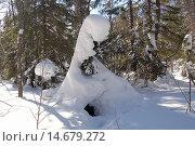 Купить «Зимний лес, ели в снегу, Природные скульптуры из снега. Дом гномов, природный парк Таганай, южный урал», фото № 14679272, снято 10 марта 2013 г. (c) Юрий Карачев / Фотобанк Лори