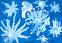 """Детский рисунок """"Снежинки"""", эксклюзивное фото № 14698176, снято 1 февраля 2016 г. (c) Бондаренко Олеся / Фотобанк Лори"""