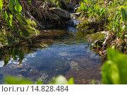 Горный ручей. Стоковое фото, фотограф Александр Андреев / Фотобанк Лори