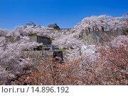 Купить «Tsuyama Castle, Okayama, Japan», фото № 14896192, снято 23 октября 2018 г. (c) age Fotostock / Фотобанк Лори