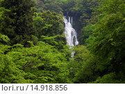 Купить «Waterfall, Sanyo, Japan», фото № 14918856, снято 22 февраля 2019 г. (c) age Fotostock / Фотобанк Лори