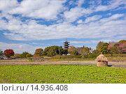 Купить «Bitchu Kokubu temple, Soja city, Okayama Prefecture, Sanyo, Japan», фото № 14936408, снято 26 марта 2019 г. (c) age Fotostock / Фотобанк Лори