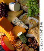 Купить «Various Cheeses Still Life», фото № 14941176, снято 26 мая 2020 г. (c) age Fotostock / Фотобанк Лори