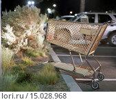 Купить «Shopping cart on curb of parking lot», фото № 15028968, снято 15 января 2009 г. (c) age Fotostock / Фотобанк Лори
