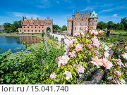 Купить «Roses blooming in front of Castle Egeskov, Denmark, Scandinavia, Europe», фото № 15041740, снято 10 октября 2019 г. (c) age Fotostock / Фотобанк Лори