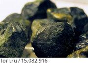Купить «phosphorite nodules, New Zealand», фото № 15082916, снято 3 сентября 2014 г. (c) age Fotostock / Фотобанк Лори