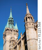 Купить «Brunswick - City hall», фото № 15223568, снято 23 января 2020 г. (c) age Fotostock / Фотобанк Лори