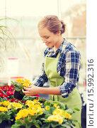 Купить «happy woman holding flowers in greenhouse», фото № 15992316, снято 25 февраля 2015 г. (c) Syda Productions / Фотобанк Лори