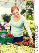 Купить «happy woman with shopping basket choosing flowers», фото № 16012324, снято 25 февраля 2015 г. (c) Syda Productions / Фотобанк Лори