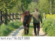 Купить «man with Icelandic horse», фото № 16027080, снято 23 марта 2019 г. (c) age Fotostock / Фотобанк Лори