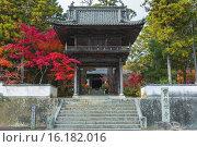 Купить «Gate of Iyama Hofuku-ji Temple», фото № 16182016, снято 22 февраля 2019 г. (c) age Fotostock / Фотобанк Лори