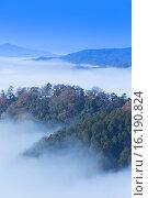 Купить «Bitchu Matsuyama Castle», фото № 16190824, снято 26 марта 2019 г. (c) age Fotostock / Фотобанк Лори