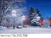 Купить «Зимний вечер в парке. Городской пейзаж», фото № 16310708, снято 21 июня 2019 г. (c) Зезелина Марина / Фотобанк Лори
