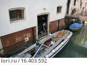Купить «Строительные работы в Венеции», фото № 16403592, снято 31 марта 2007 г. (c) Робул Дмитрий / Фотобанк Лори