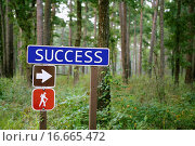 Купить «Blue traffic sign with success message in the green forest», фото № 16665472, снято 17 июля 2018 г. (c) easy Fotostock / Фотобанк Лори