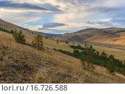 Купить «Тажеранские степи берега Байкала», фото № 16726588, снято 25 июля 2013 г. (c) Виталий Веревкин / Фотобанк Лори