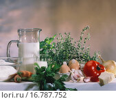 Ingredients for pasta dishes with vegetables & herbs. Стоковое фото, фотограф STOCKFOOD LBRF / easy Fotostock / Фотобанк Лори
