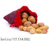 Купить «nuts in sack», фото № 17114092, снято 8 июля 2020 г. (c) easy Fotostock / Фотобанк Лори