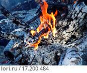 Купить «Burning logs in the fireplace», фото № 17200484, снято 17 августа 2019 г. (c) easy Fotostock / Фотобанк Лори