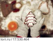 Купить «Child holding gingerbread cookie», фото № 17530464, снято 10 декабря 2019 г. (c) PantherMedia / Фотобанк Лори