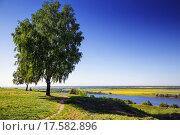 Сельский пейзаж (2014 год). Стоковое фото, фотограф Сергей Алимов / Фотобанк Лори