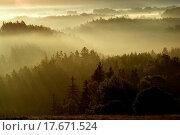 Silhouettes of Czech Switzerland. Стоковое фото, фотограф Tomas Peltan / easy Fotostock / Фотобанк Лори