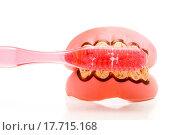 Купить «Dental Hygiene», фото № 17715168, снято 21 августа 2018 г. (c) easy Fotostock / Фотобанк Лори
