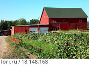 Купить «OLD FARM BARN & FLOWER FIELD, PORTLAND OR.», фото № 18148168, снято 20 февраля 2020 г. (c) easy Fotostock / Фотобанк Лори