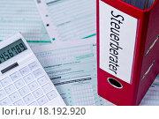 Купить «Documents for tax advisers», фото № 18192920, снято 18 ноября 2018 г. (c) easy Fotostock / Фотобанк Лори
