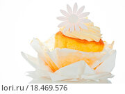 Купить «Cupcake with vanilla cream and sugar flower on a white backgroun», фото № 18469576, снято 21 августа 2018 г. (c) easy Fotostock / Фотобанк Лори