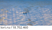 Купить «Man riding a snowmobile on winter river, top view», фото № 18702460, снято 16 декабря 2015 г. (c) Владимир Мельников / Фотобанк Лори
