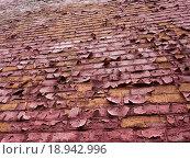 Облупившаяся краска на кирпичной стене. Стоковое фото, фотограф Андрей Губецков / Фотобанк Лори