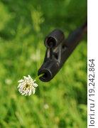Купить «Оружие. в дуле цветок.», фото № 19242864, снято 22 июня 2015 г. (c) М Б / Фотобанк Лори