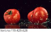 Купить «Помидоры падают на мокрый стол», видеоролик № 19429628, снято 29 апреля 2015 г. (c) Дебалюк Александр Владимирович / Фотобанк Лори