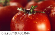 Купить «Капли воды на спелых помидорах», видеоролик № 19430044, снято 2 апреля 2015 г. (c) Дебалюк Александр Владимирович / Фотобанк Лори