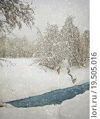 Купить «aging winter photography», фото № 19505016, снято 19 марта 2019 г. (c) PantherMedia / Фотобанк Лори