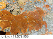 Купить «Stromatolites at Shark Bay», фото № 19579956, снято 19 февраля 2020 г. (c) easy Fotostock / Фотобанк Лори