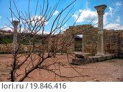 Купить «Ancient basilica columns of Creek colony Chersonesos», фото № 19846416, снято 25 апреля 2018 г. (c) easy Fotostock / Фотобанк Лори