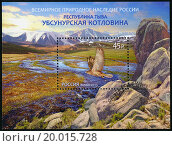 Купить «RUSSIA - 2013: shows World Natural Heritage of Russia, Republic of Tyva, Uvs Nuur Basin», фото № 20015728, снято 17 августа 2018 г. (c) easy Fotostock / Фотобанк Лори