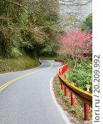 Купить «Scenic winding road in Taiwan», фото № 20209992, снято 17 января 2013 г. (c) easy Fotostock / Фотобанк Лори