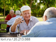 Купить «Active retired people, old friends and free time, two seniors having fun and playing chess game at park. Waist up», фото № 20213088, снято 1 ноября 2012 г. (c) easy Fotostock / Фотобанк Лори