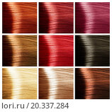 Купить «Hair Colors Palette», фото № 20337284, снято 8 сентября 2012 г. (c) easy Fotostock / Фотобанк Лори