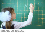 Купить «Pupil writing an example on a school chalkboard», фото № 20405252, снято 5 апреля 2013 г. (c) Losevsky Pavel / Фотобанк Лори